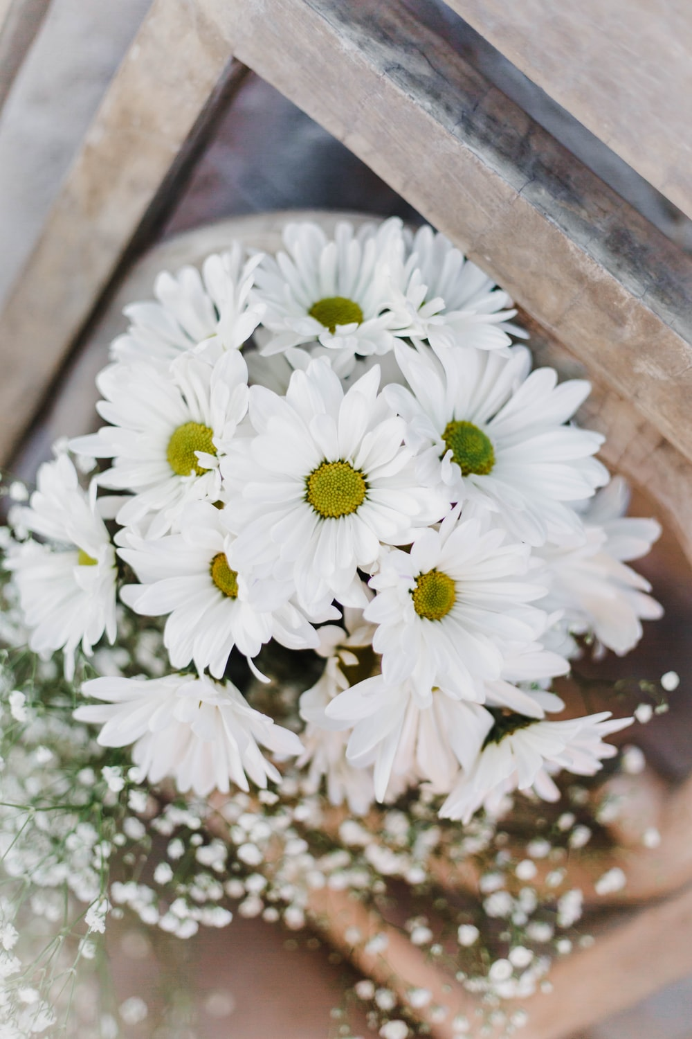 white flowers on brown surface