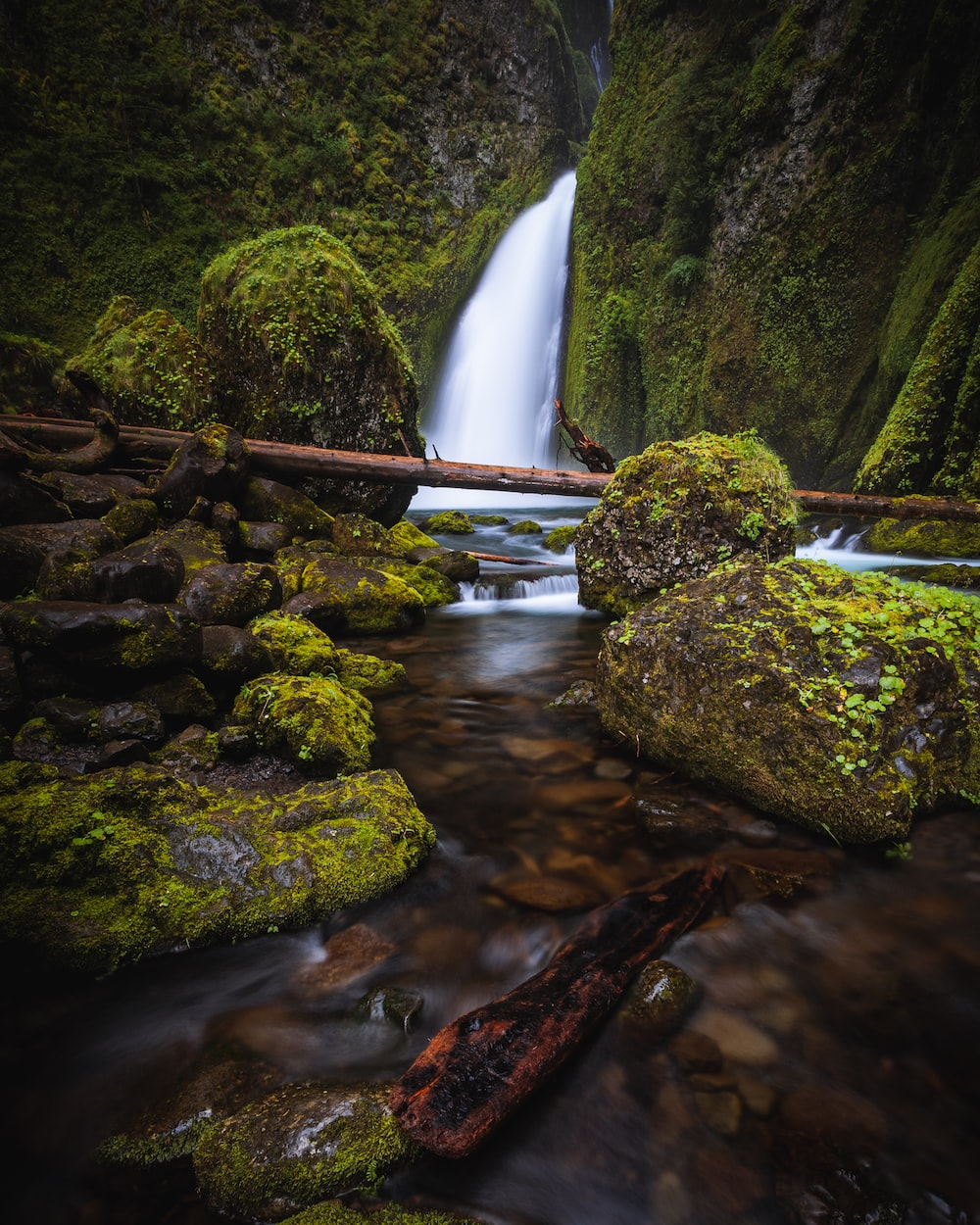 waterfall with moss