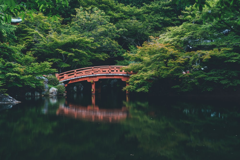red bridge near trees
