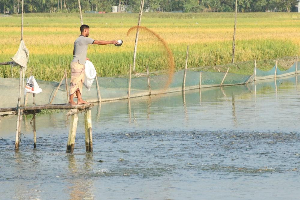 man in gray shirt throwing brown fish food on ponds
