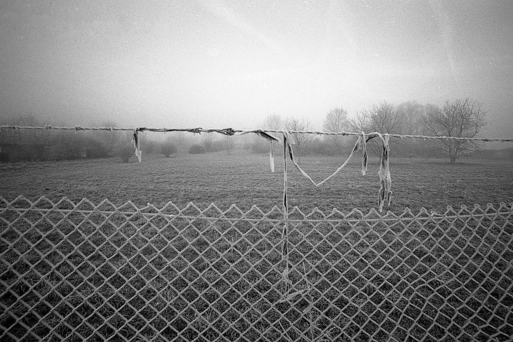 grayscale photo of chain-link fence