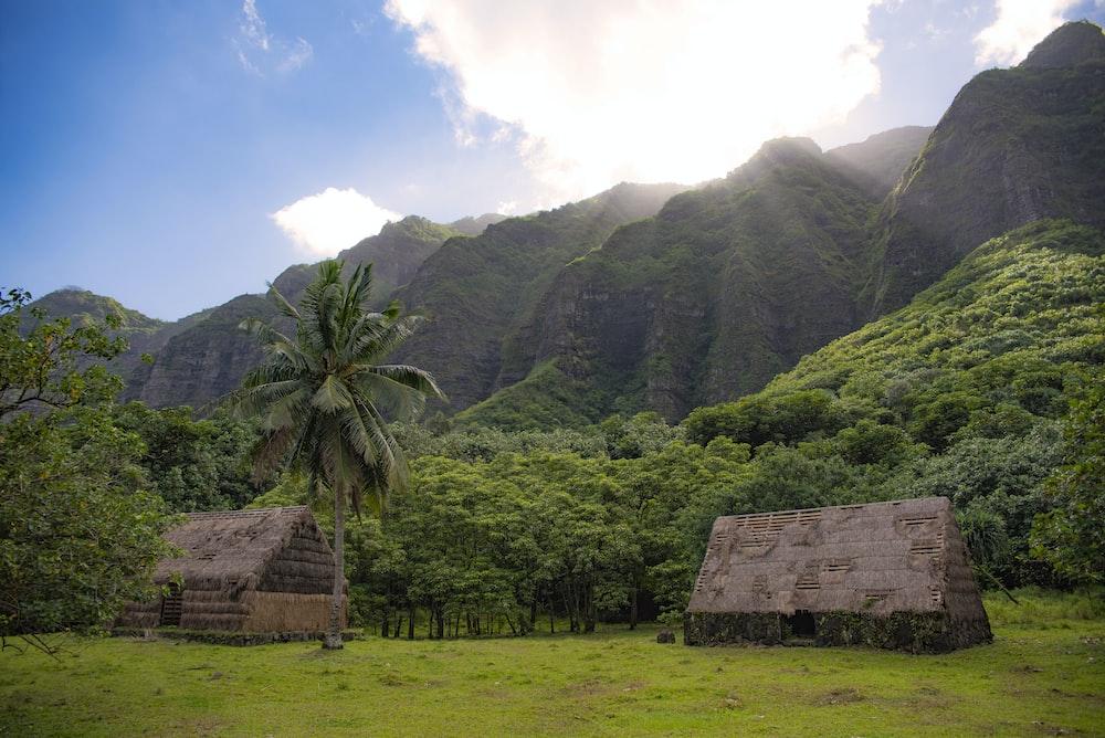 two brown hut across mountain photo
