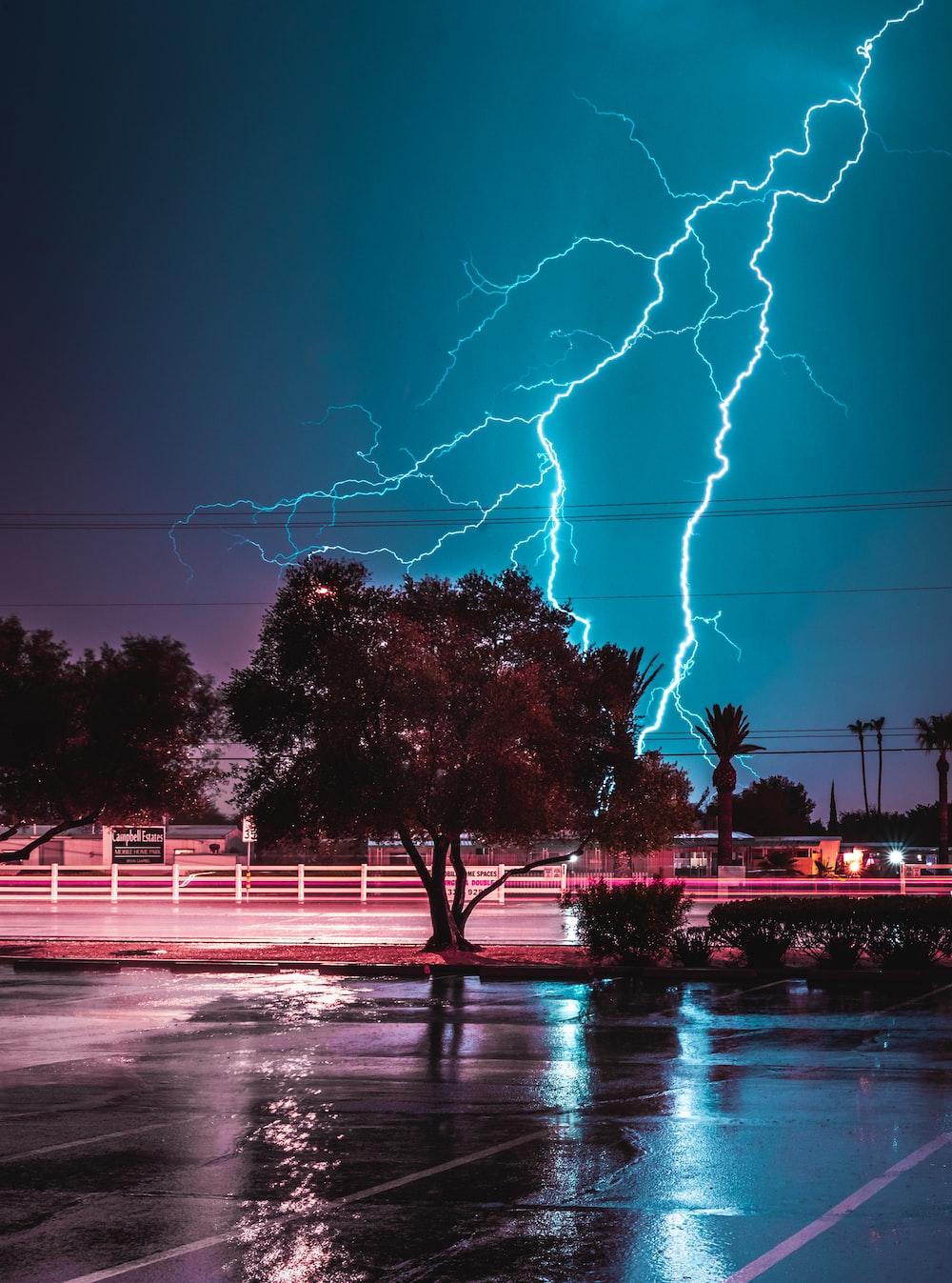 green tree across lightning bolt