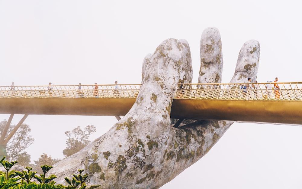 palm bridge