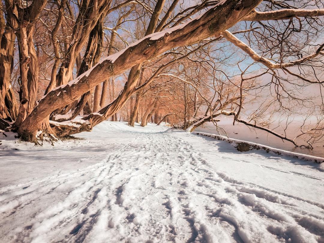 Hot sun, cold snow  Mellow me —  stuck Inbetween.