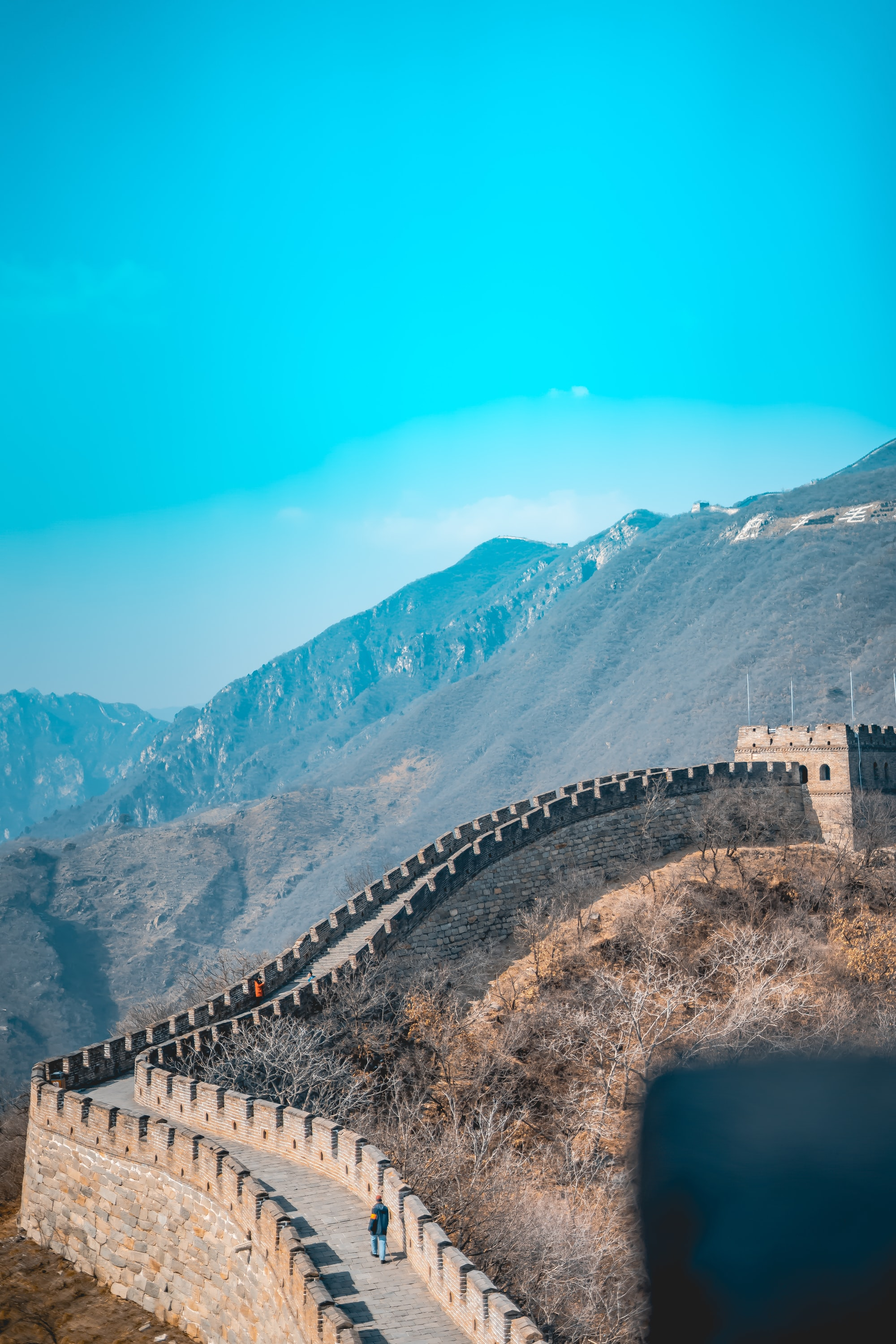 Hidden Under Green: The New Great Wall of China
