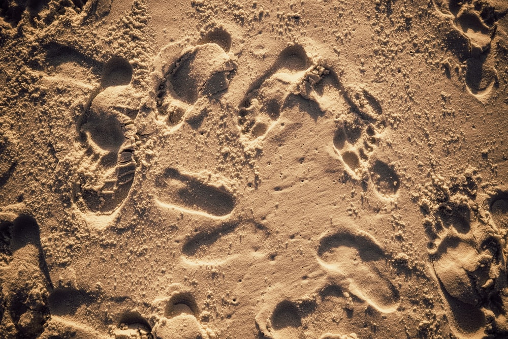 human footprints on sand during daytime