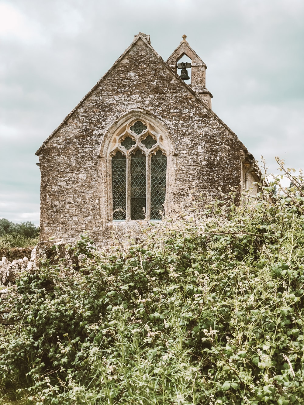 brown bricked church surrounded with green plants