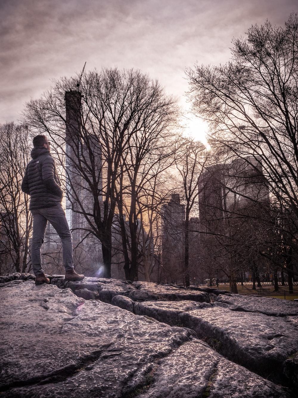 man standing beside tree
