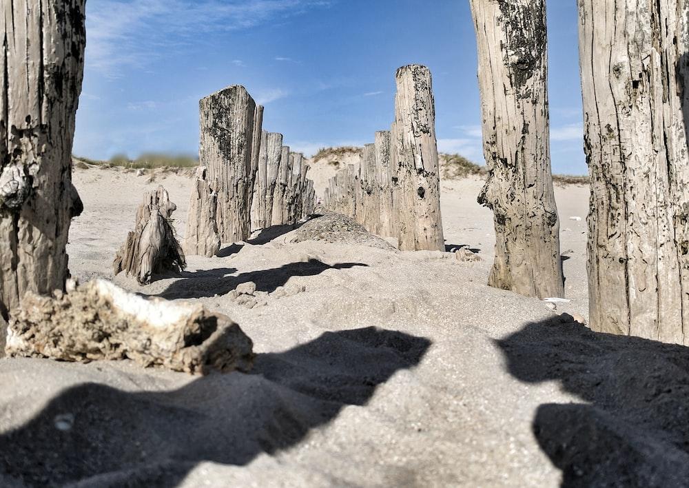 grey posts on sand