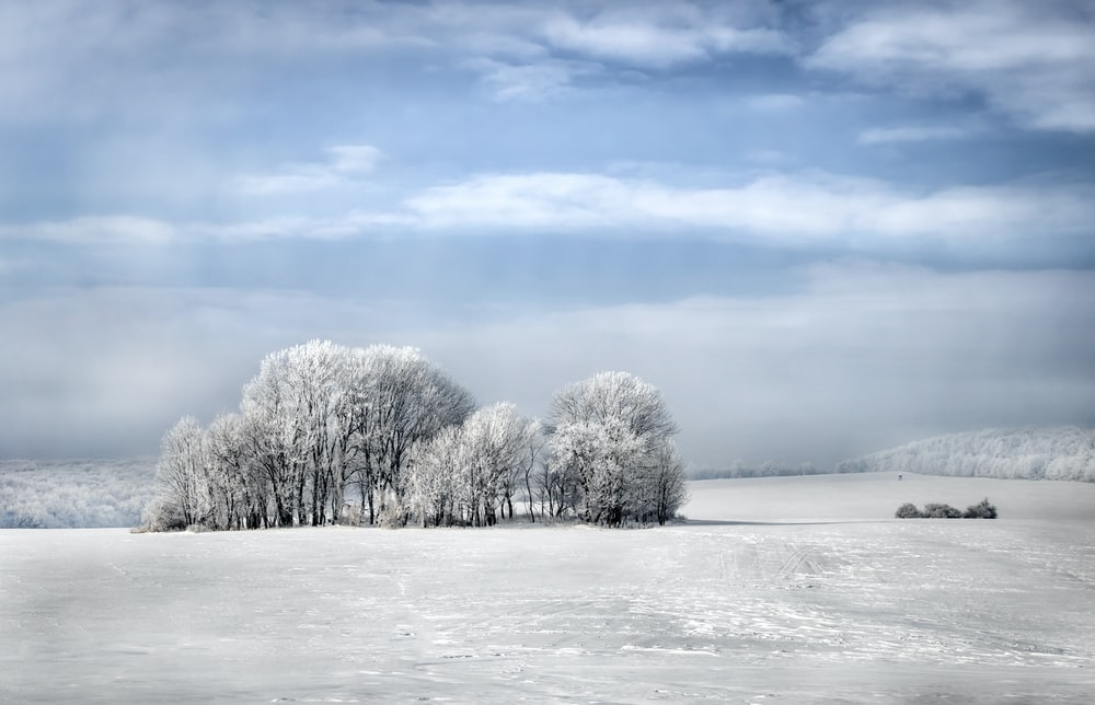 snowy field under clear blue sky during daytime