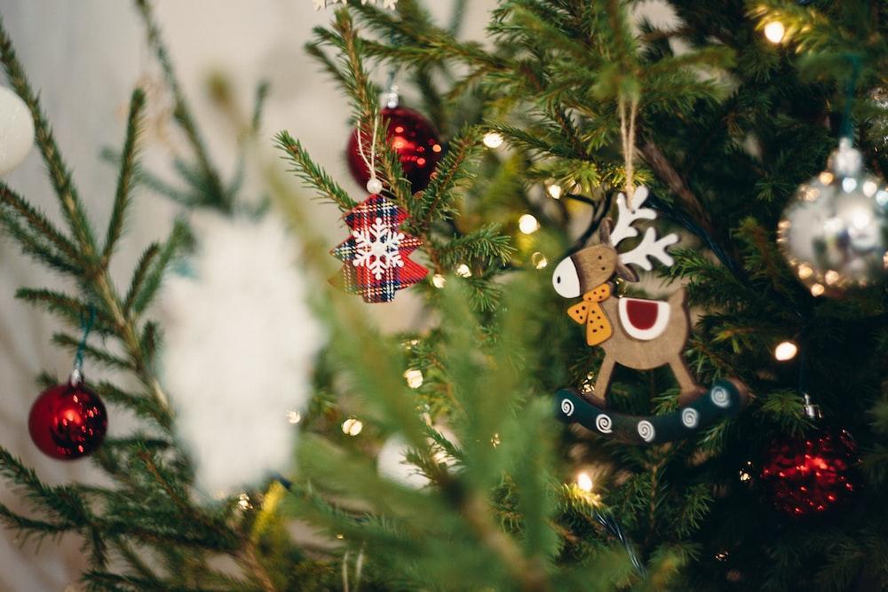 selective focus photography of green Christmas tree
