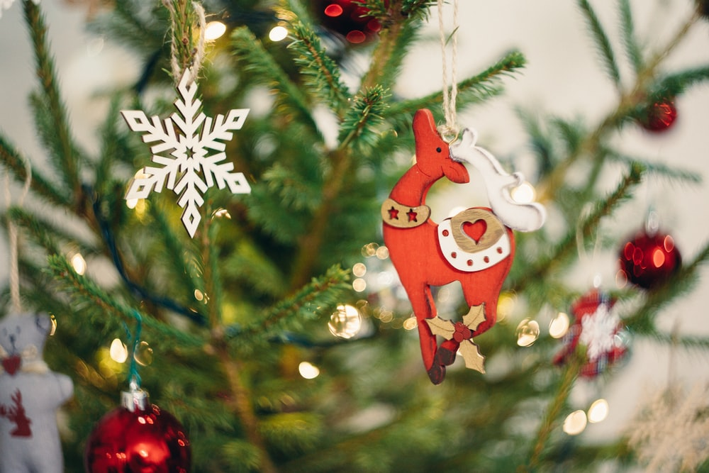 selective focus photography of red deer Christmas tree decor