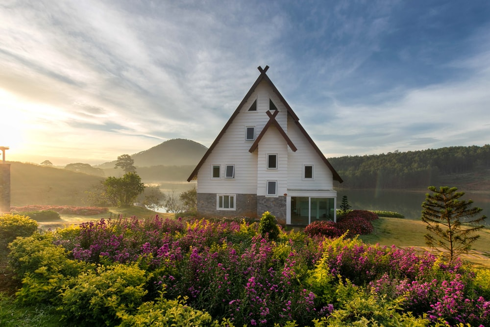 white and gray painted house with meadow of lavender
