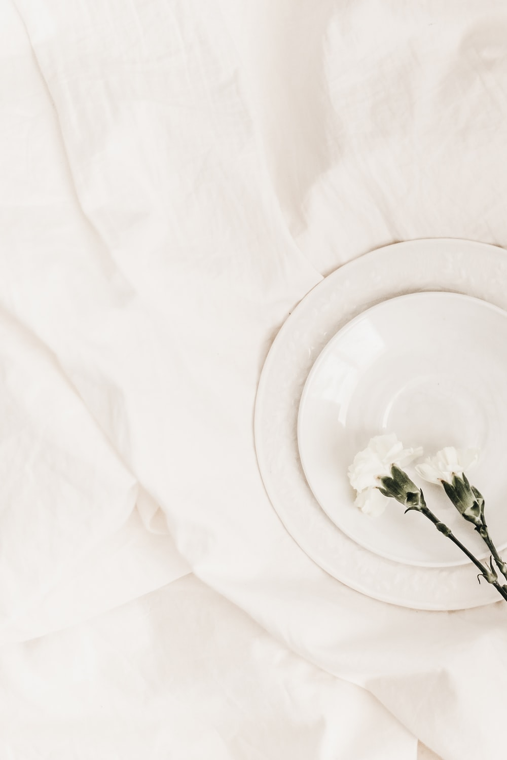 flat lay photography of two white flowers on top of white plate