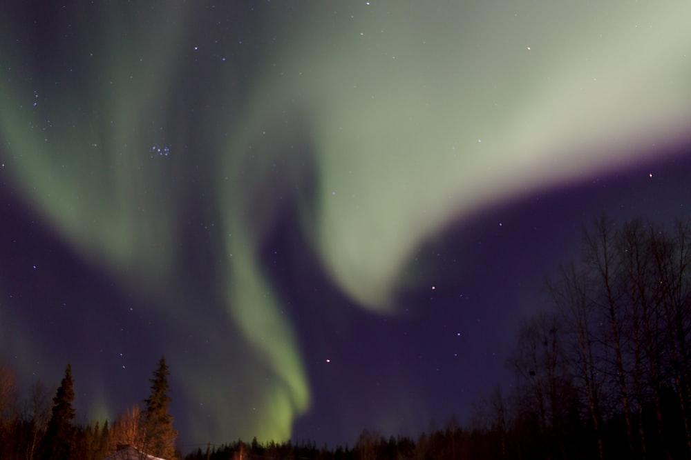 Immeljärvi Pictures | Download Free Images on Unsplash
