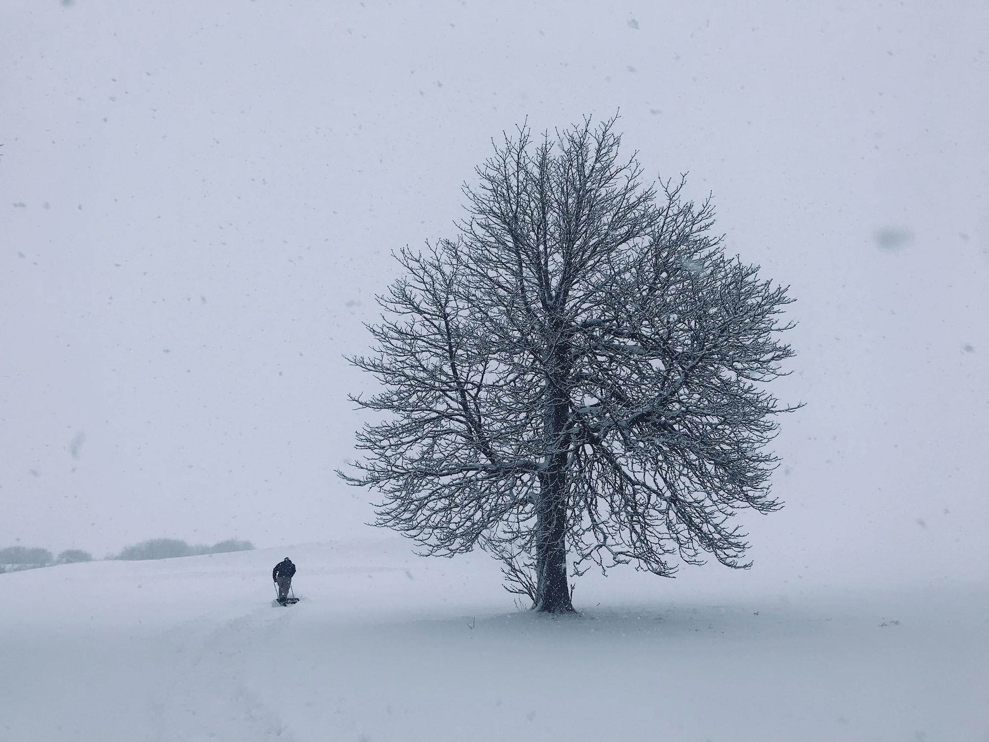 Do not freeze | Lithuania tech weekly #2