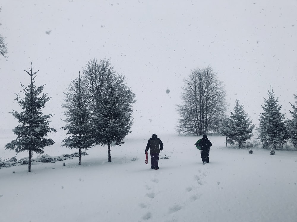 two person's walking on snow