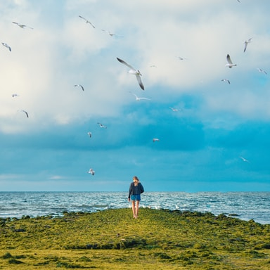 woman standing on cliff with birds flying under sea