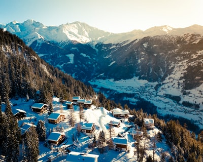 snow covered houses beside green pine trees