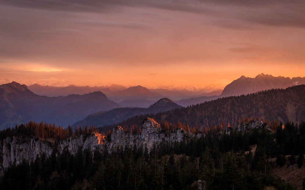 mountain and trees in nature photography