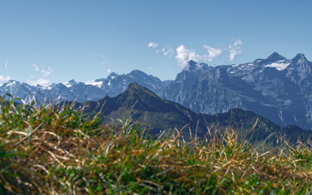 selective focus photography of mountain
