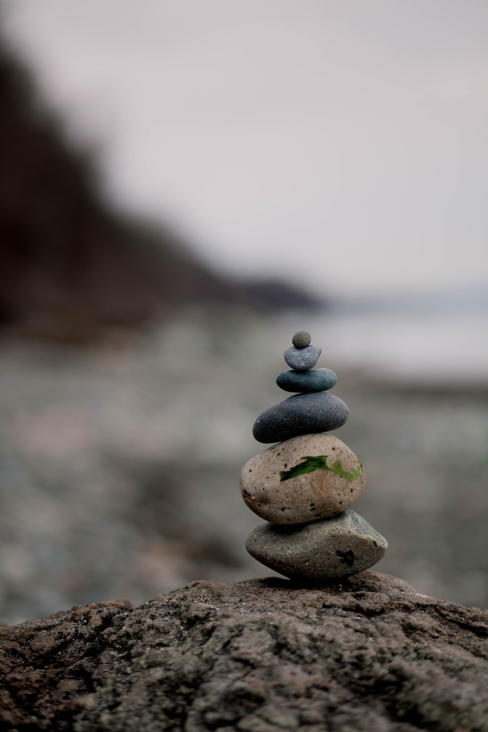 selective focus photography of stones