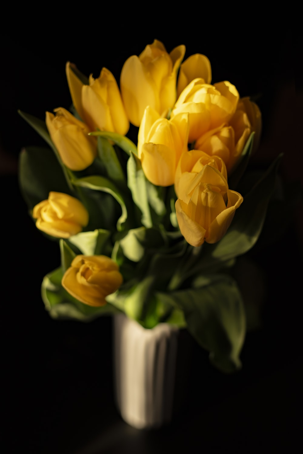 yellow tulip flower bouquet
