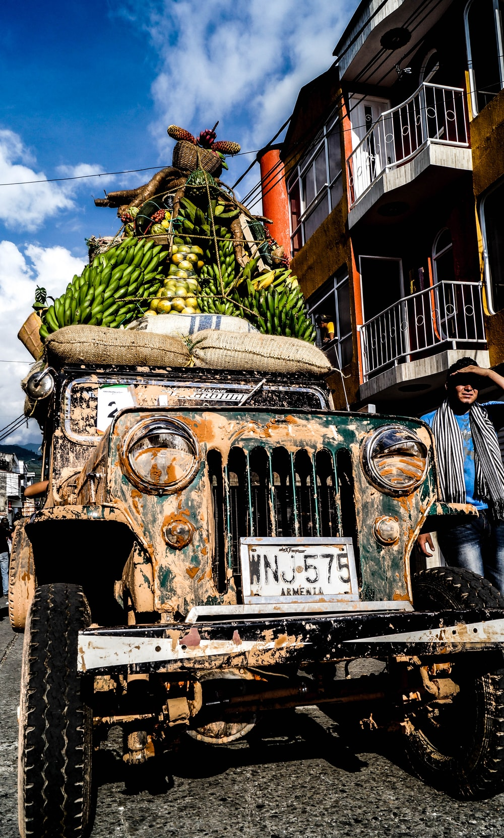 green bananas on vehicle roof