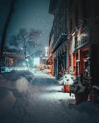 나는 사라진다   (naneun sarajinda) loneliness stories