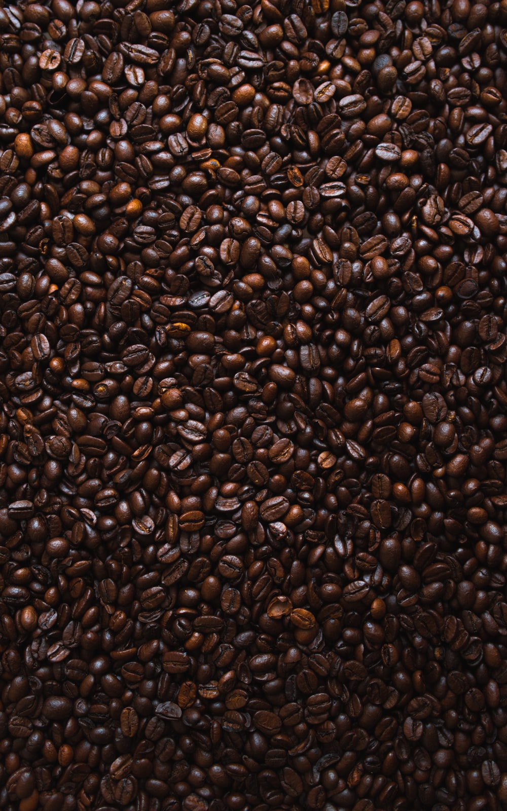 brown coffee beans lot