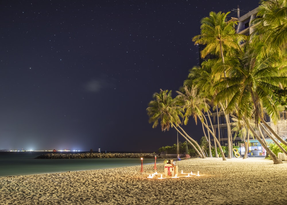 lighted candles in beach near coconut trees at night