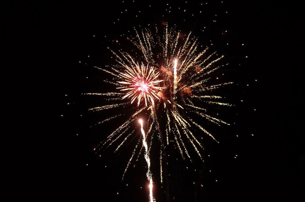 fireworks sparkling in the sky
