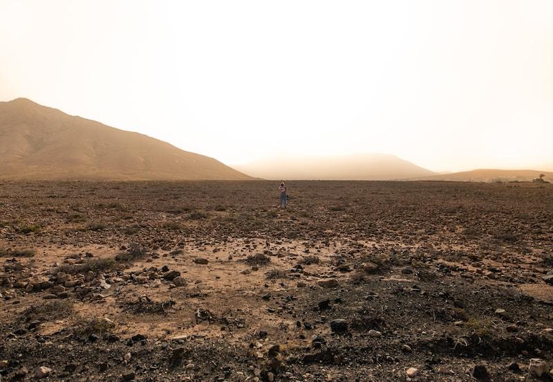 grey field during daytime