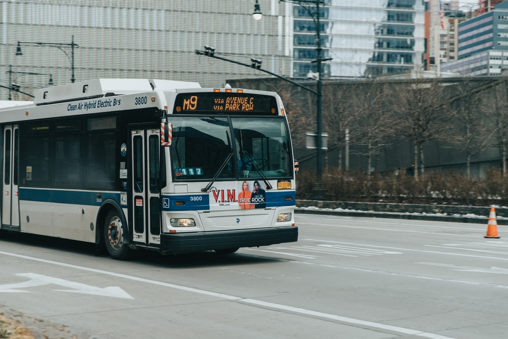 white and blue bus on road at daytime