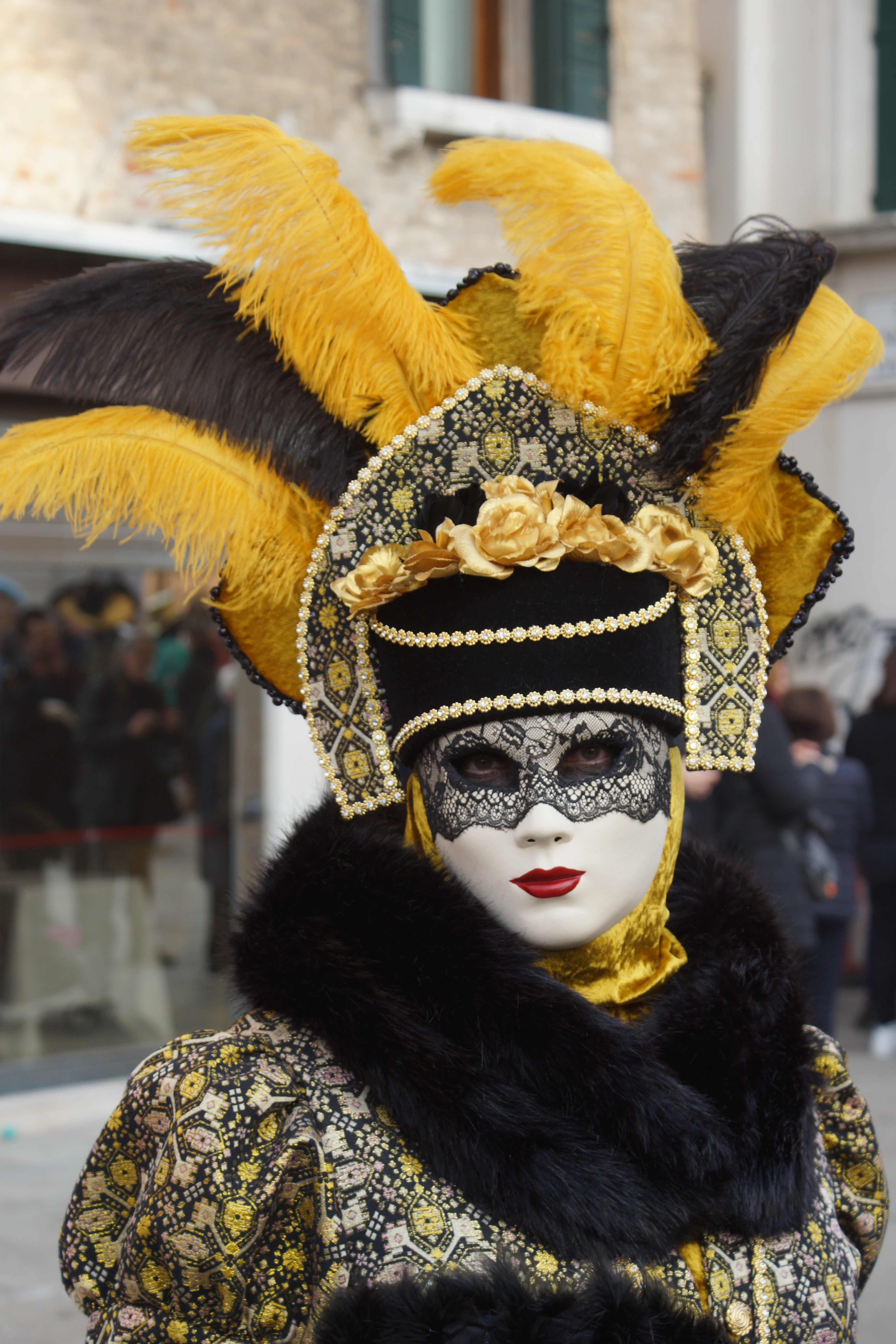 selective focus photography of person wearing masquerade and costume