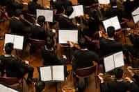 Orchestra violin stories