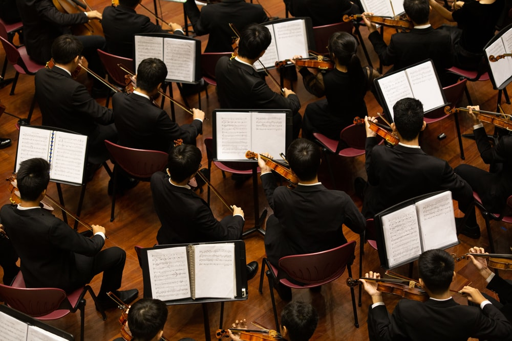 group of person playing violin