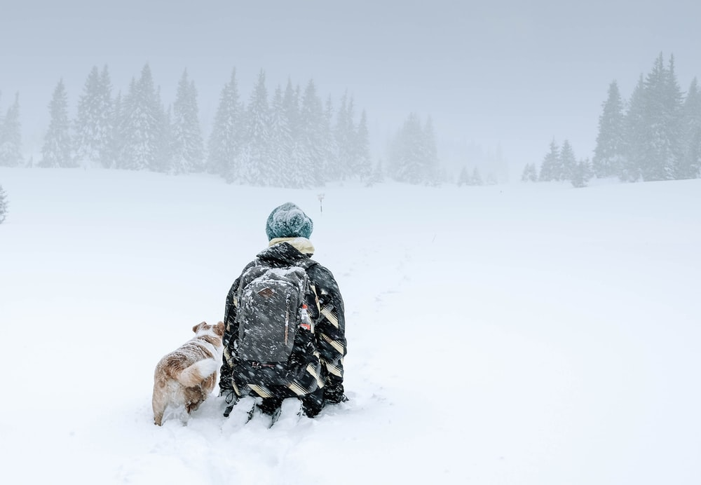 person kneeling on snow capped ground
