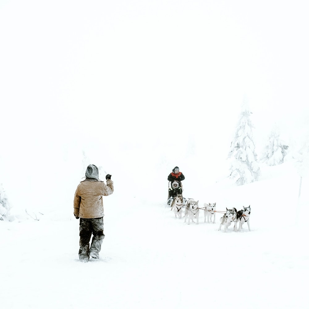 boy wearing brown jacket standing on snow