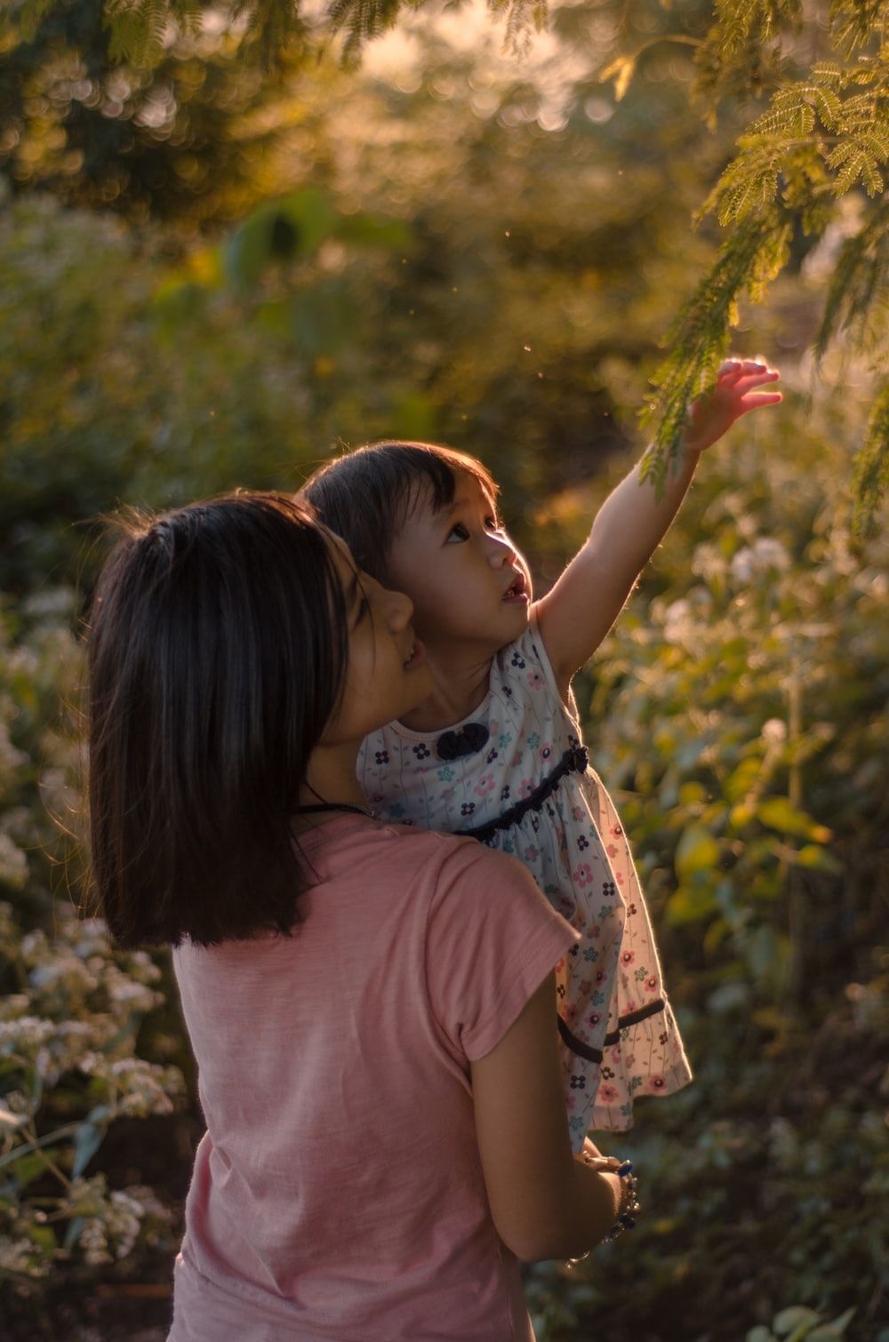 girl carrying toddler about to touch leafed tree