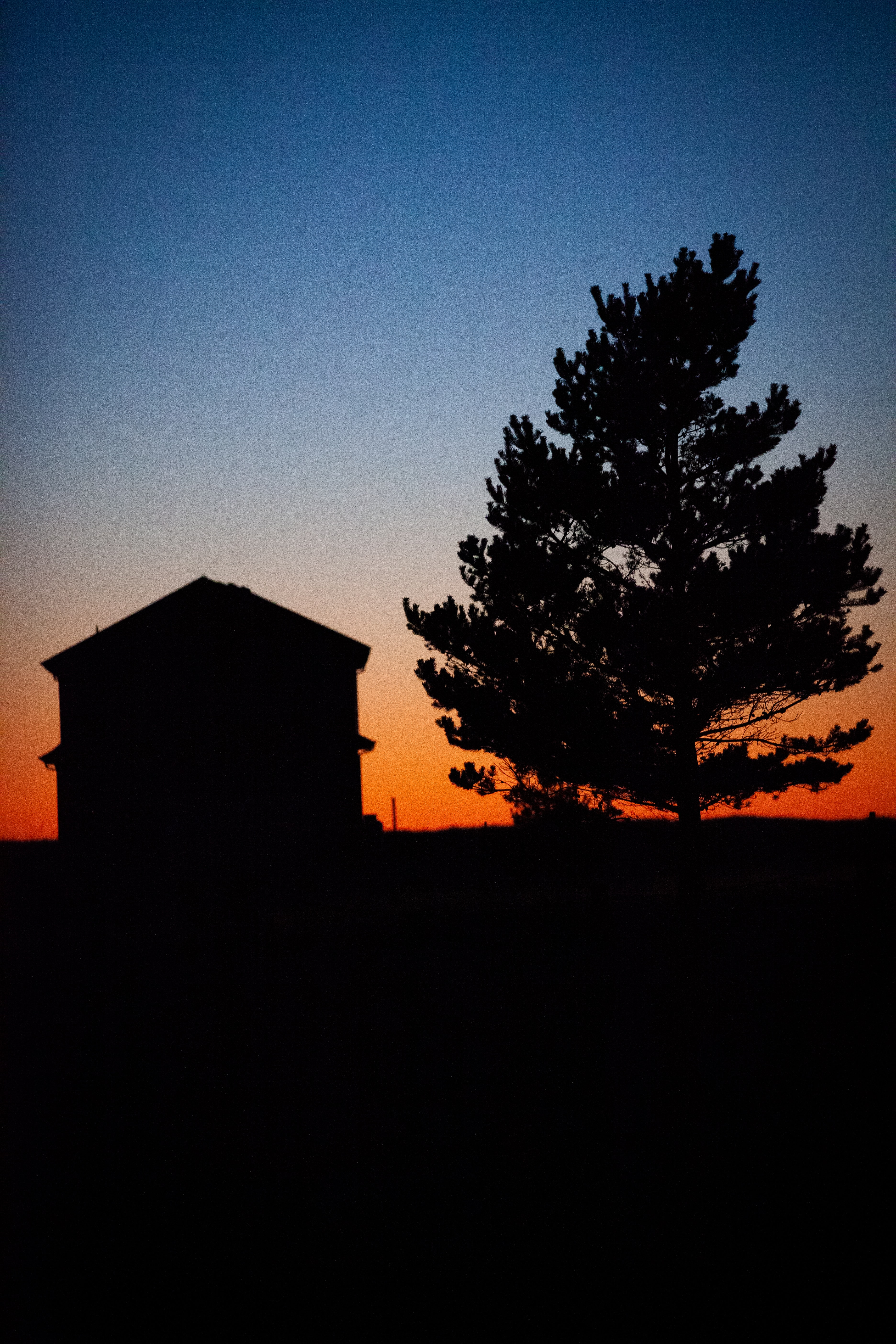 silhouette of house and tree during golden hour