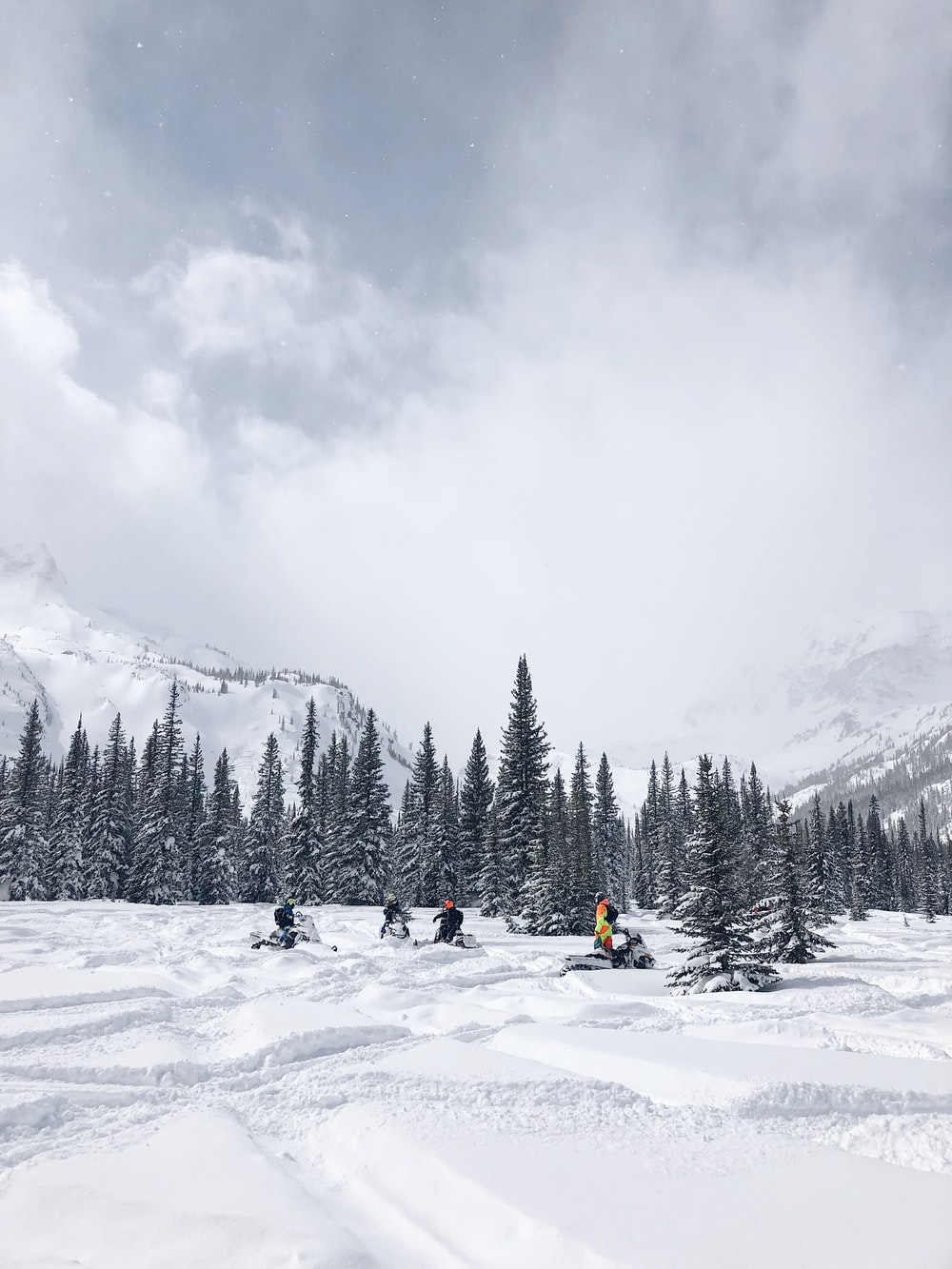 people on snowmobile