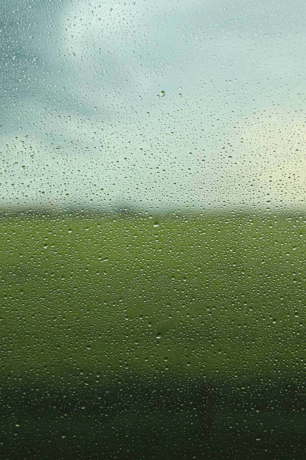close-up photo of vehicle window with view of green grass during daytime