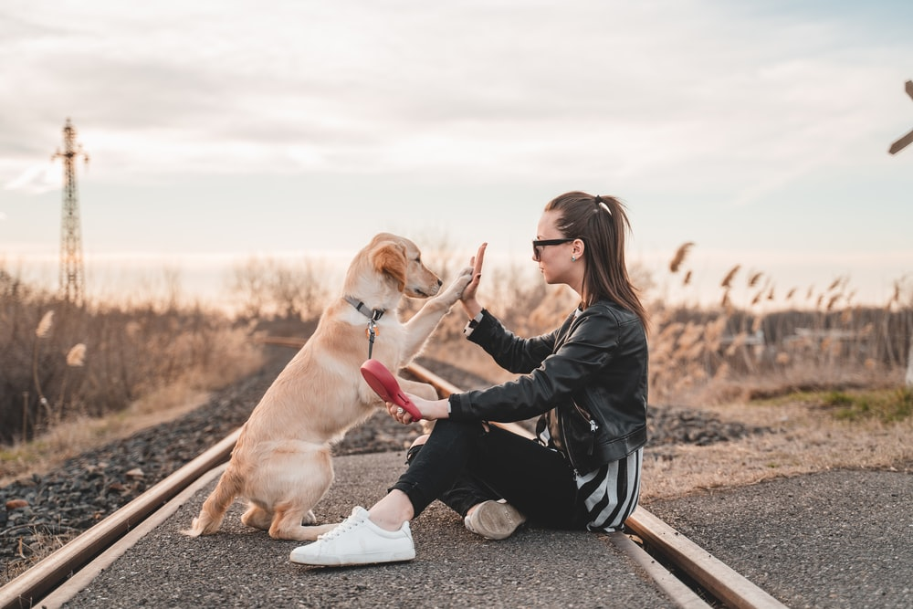 woman sitting and playing with dog outdoors