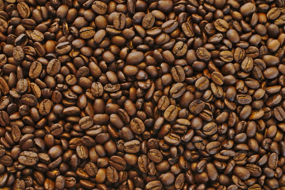 coffee beans lot