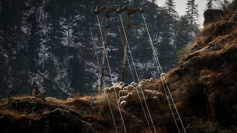 cable car frame with posts