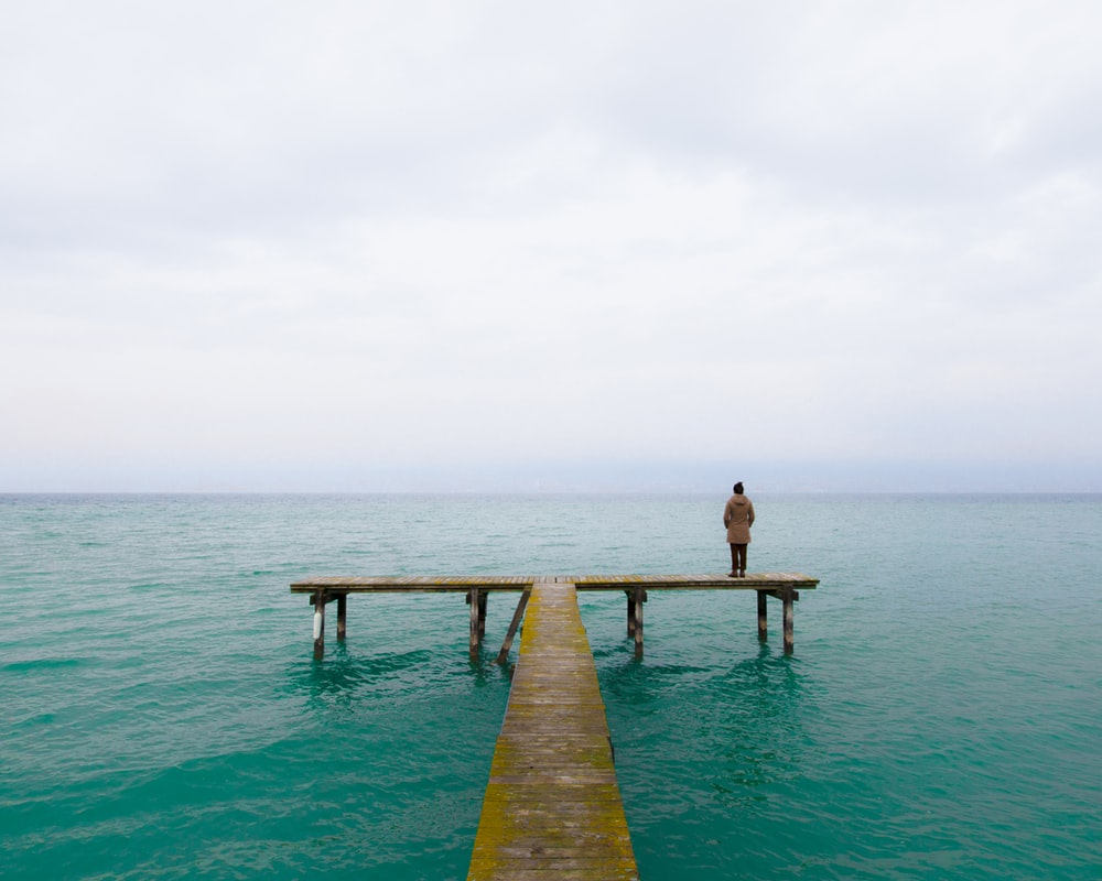 person standing on brown wooden dock during daytime