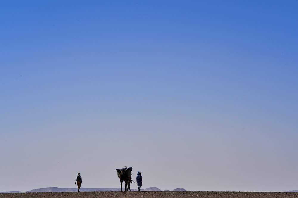 silhouette of two persons walking with four legged animal during daytime