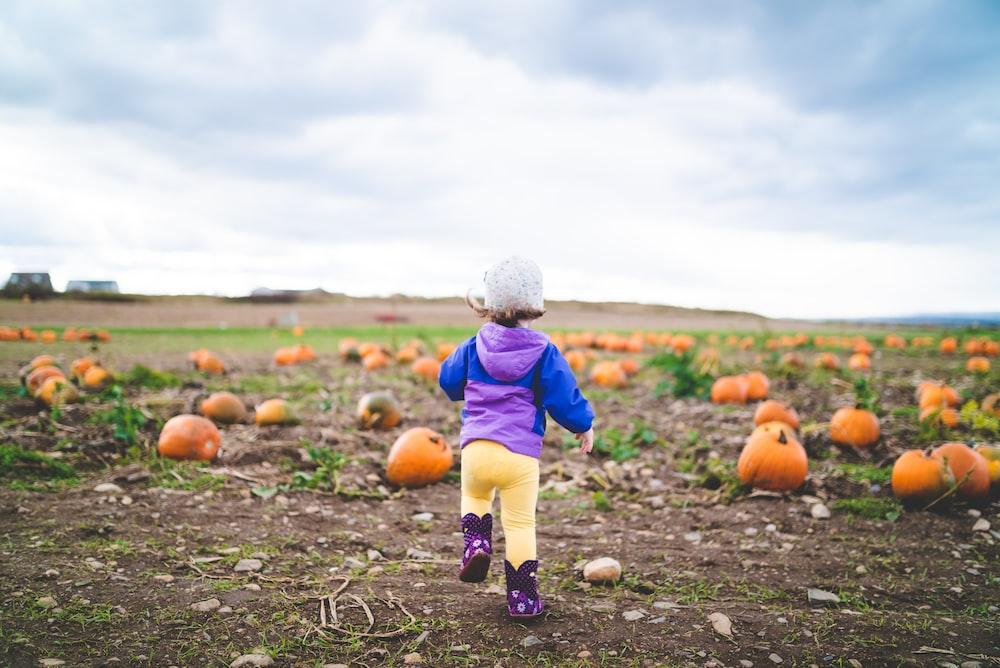 toddler standing near pumpkins on ground